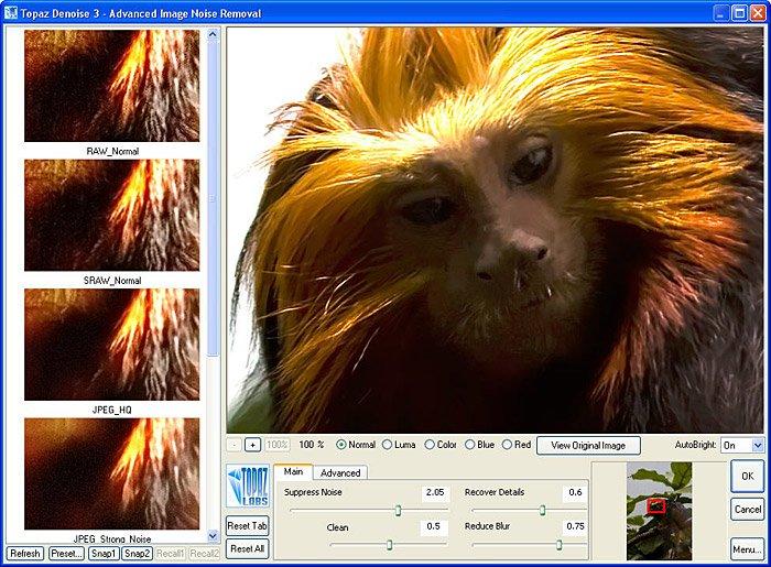 monkey2a