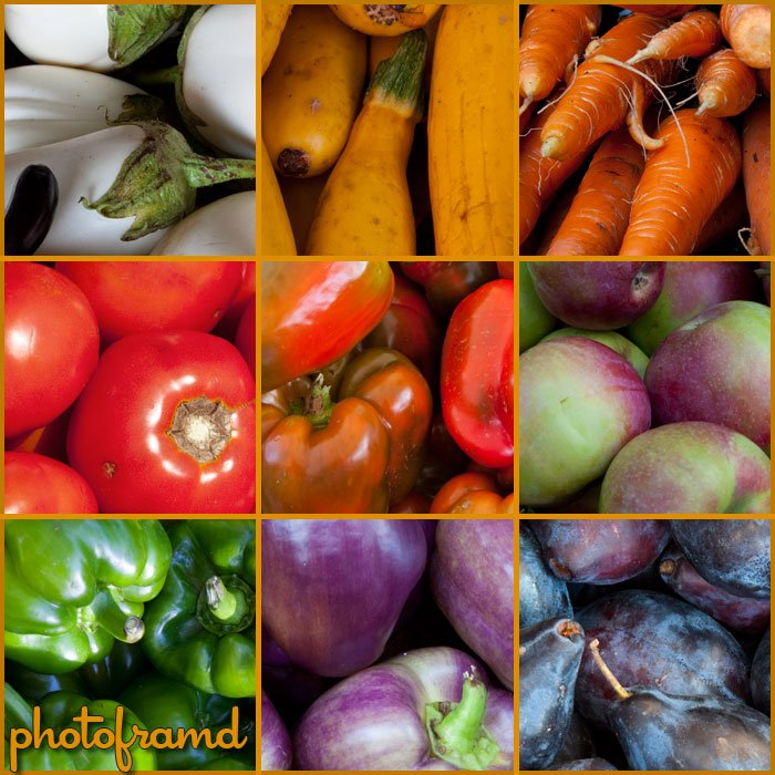 farmersmarket2009