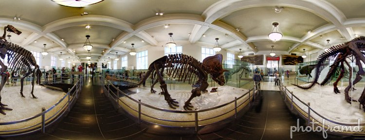 Museum Of Natural History Nyc Admission Fee